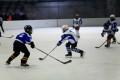 ДП Ирбис-Скейт – НСА (12г) 24-11-2013