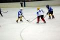 ДП Ирбис-Скейт – НСА (12г) 02-02-2014